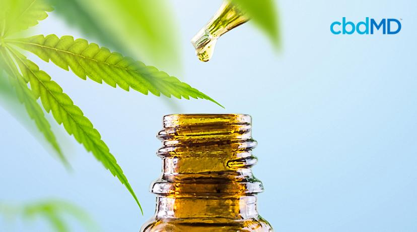 What Is CBD Oil? Here's What You Need To Know