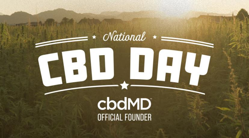 What Is National CBD Day and Why Is It Important?