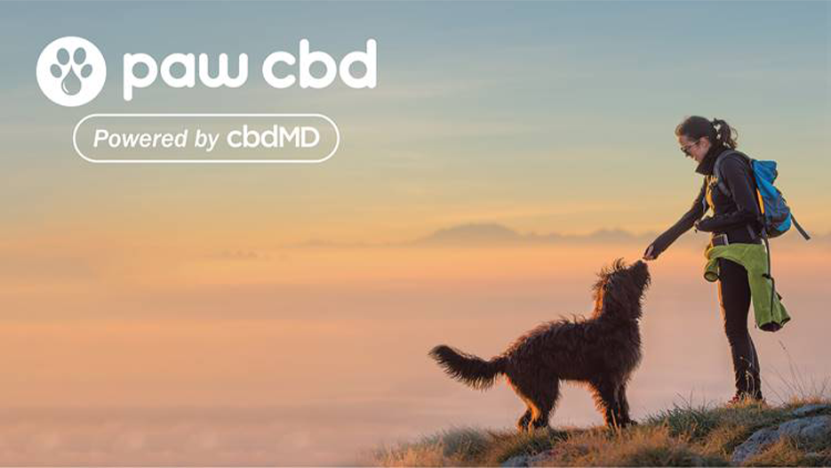 October is National Pet CBD Month!