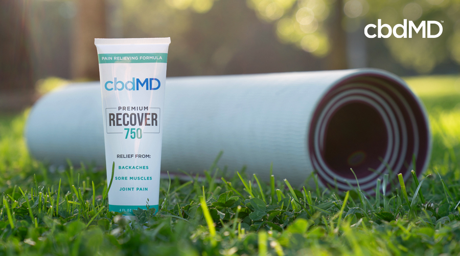 Why cbdMD Recover Works for Any Lifestyle