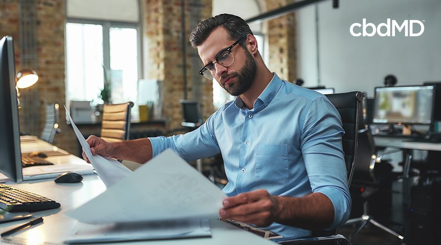 man studying work to complete project