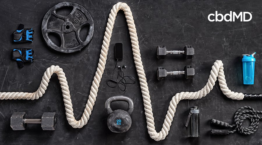 equipment used for crossfit workouts