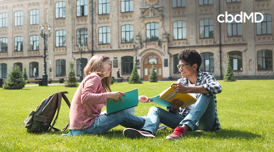 college students sitting on lawn in front of building