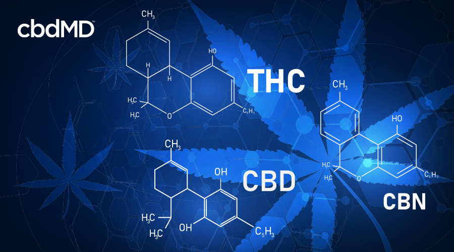 diagram depicting THC CBD and CBN compounds