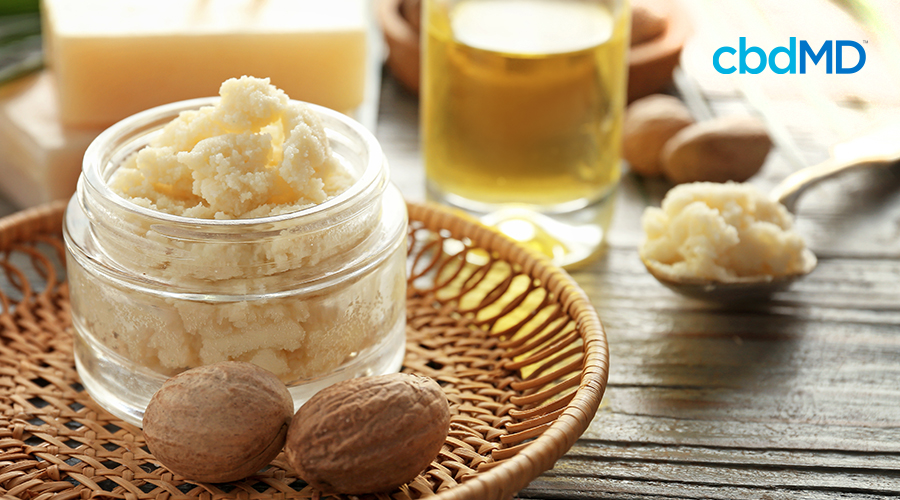 shea butter in glass jar on table with shea nuts