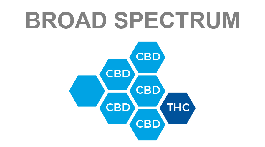 Broad spectrum diagram of light blue CBD hexagons with one THC hexagon