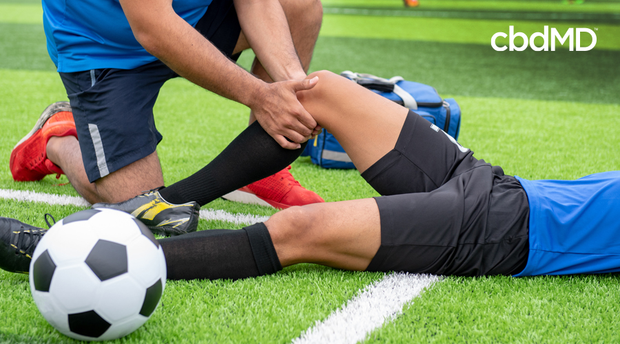 Man in soccer uniform with blue jersey and black shorts lays on soccer field while teammate massages right knee with soccer ball in foreground