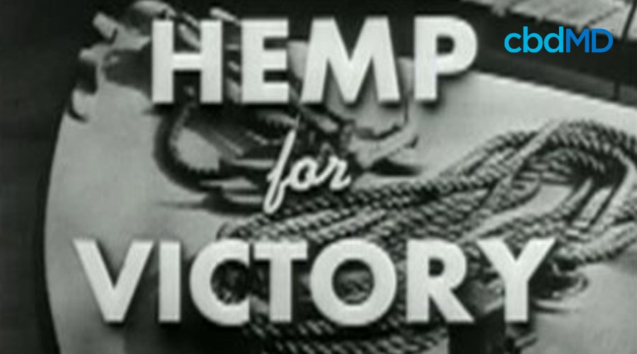 A frame of a WW2 era film entitled Hemp for Victory in black and white with hemp rope