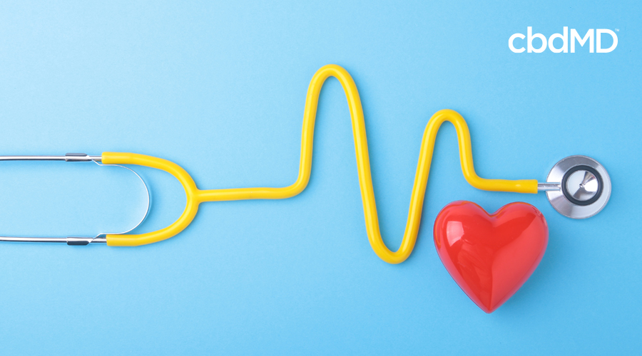 Graphic of stethoscope with yellow tubing and red heart on light blue background