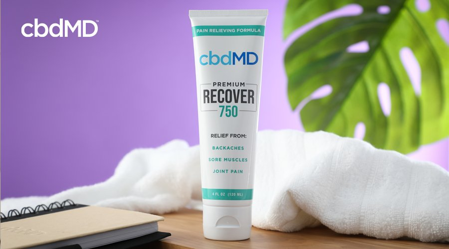 Squeeze bottle of 750 Recover CBD topical by cbdMD on table next to notebook with white towel and large plant leaf in the background