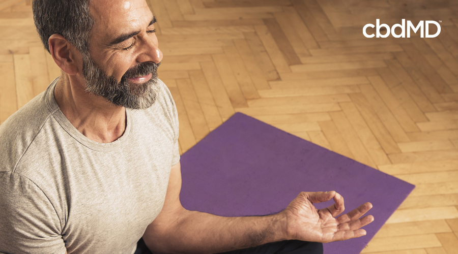 Man with gray beard and beige shirt sits in yoga pose on purple yoga mat with thumb and index finger touching while resting hand on knee