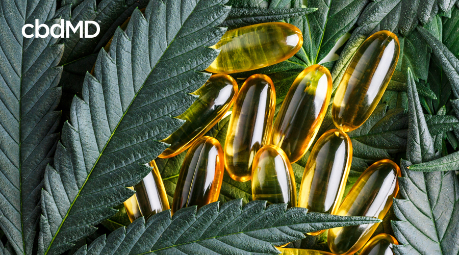 A collection of CBD oil capsules sits nestled in a bed of hemp leaves