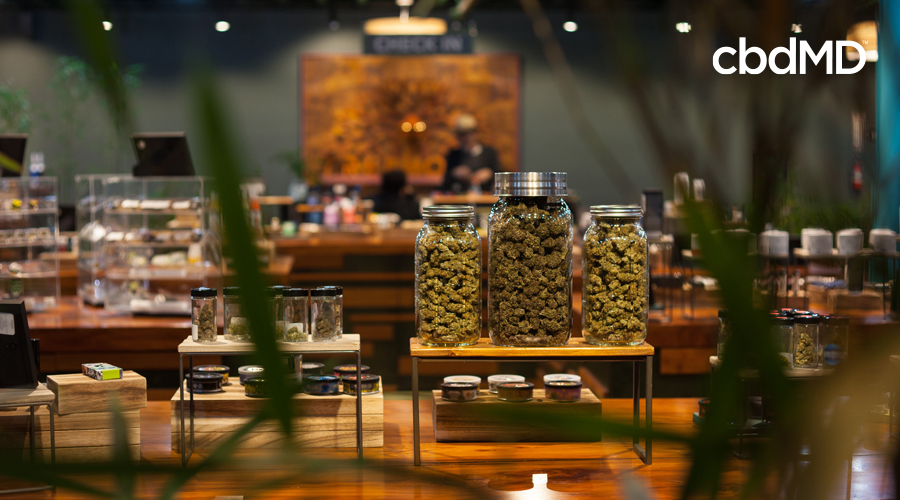 Varieties of cannabis sit in sealed glass jars on a table of a cannabis dispensary