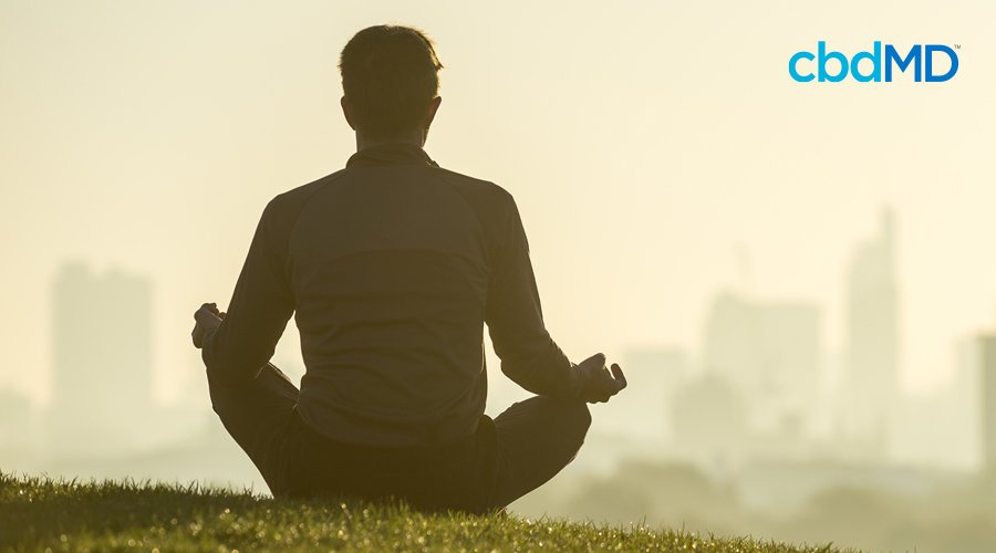 Man sits cross legged with hands resting on knees in yoga position with city skyline looming in distant background