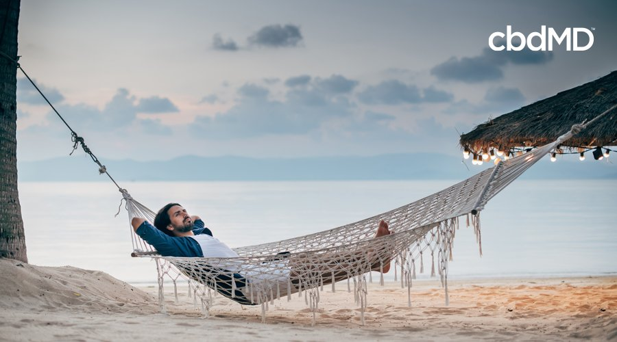 Dark-haired man relaxes in hammock on beach attached to roof of tiki hut with string lights and tree with ocean in the background