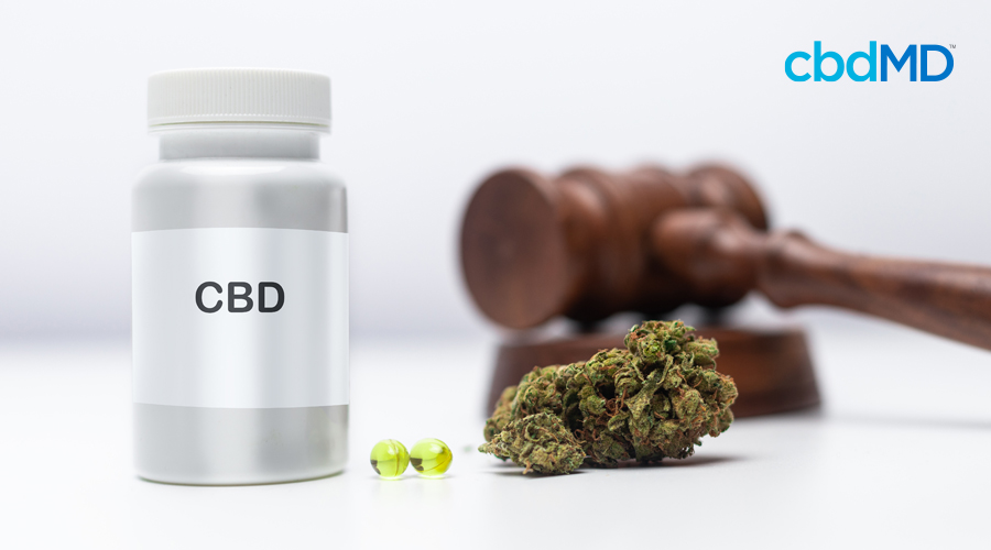 A plan bottle of CBD sits next to softgel capsules and hemp with a gavel in the background