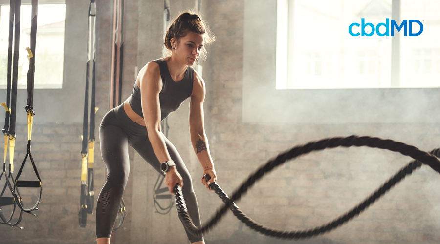 An athletic young woman in black workout clothes works out with heavy black ropes in a crossfit gym