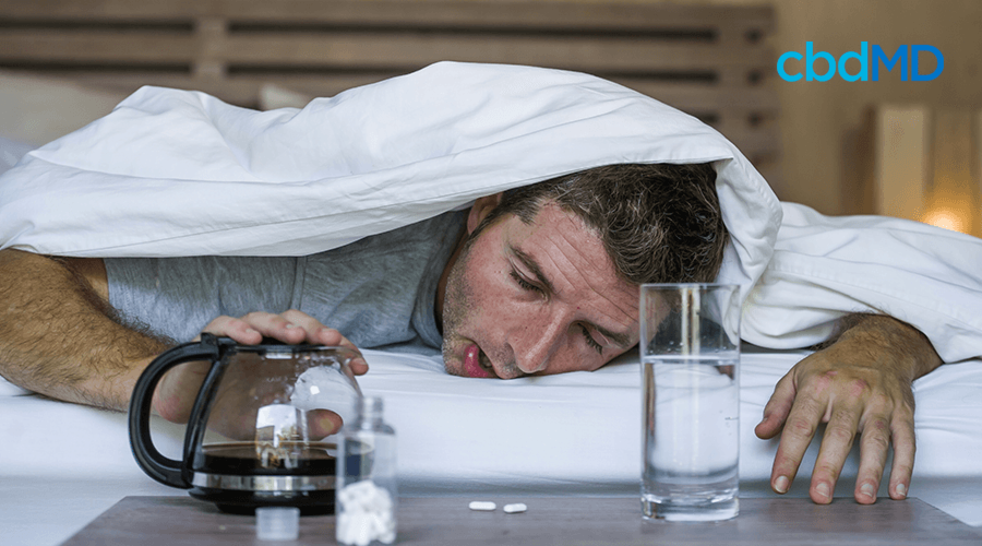 Real People Describe What A Hangover Feels Like