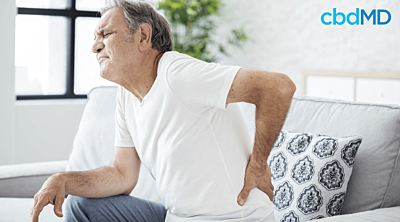 Is It So Simple – Why Use CBD for Chronic Pain?